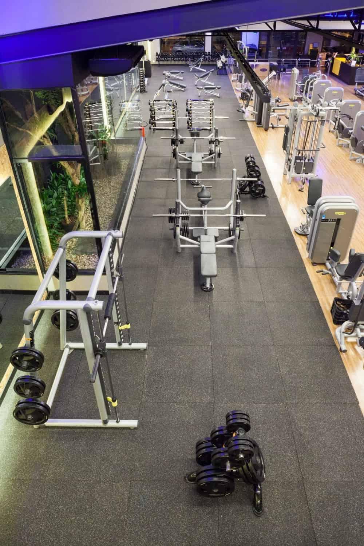 piso academia musculação